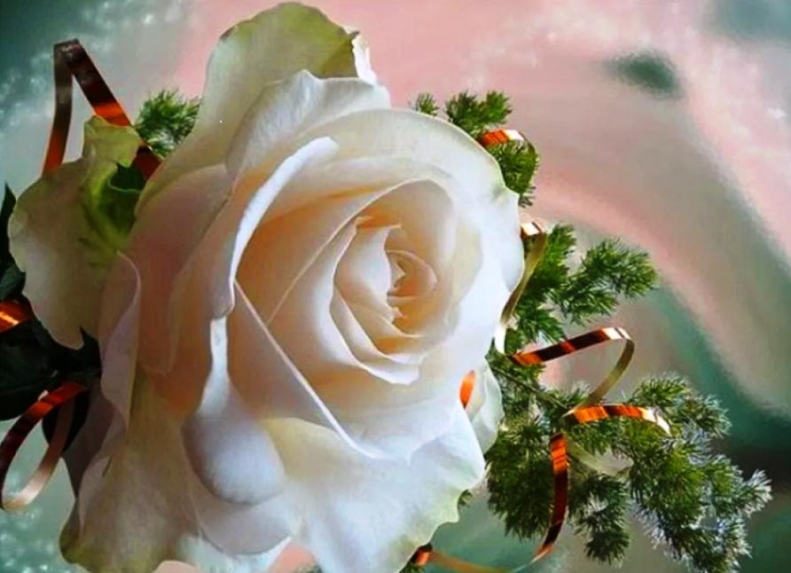 открытка татьяне с розами они получились горочкой